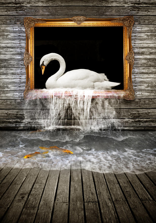 Swan in golden frame. A surreal room with a white swan swimming in a gilded golden frame as water spills from the frame into the room creating a pool with golden royalty free stock images