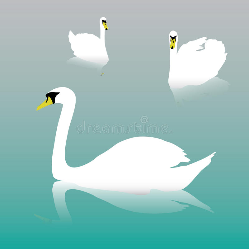 Free Swan On The Watter Eps10 Stock Photo - 36093440