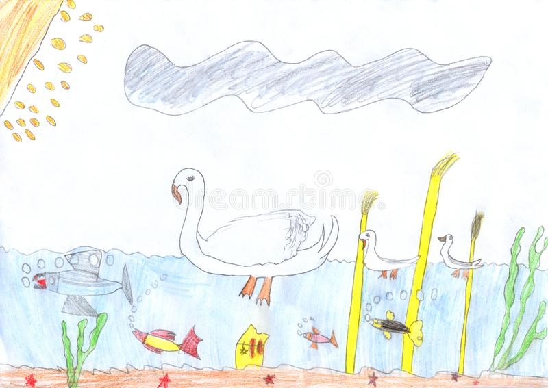 Kids pencil drawing of a white swan in the lake and underwater wild life vector illustration