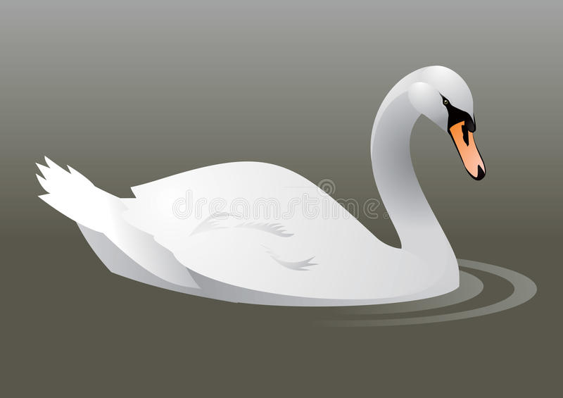 Download Swan On The Water Stock Photography - Image: 16700762