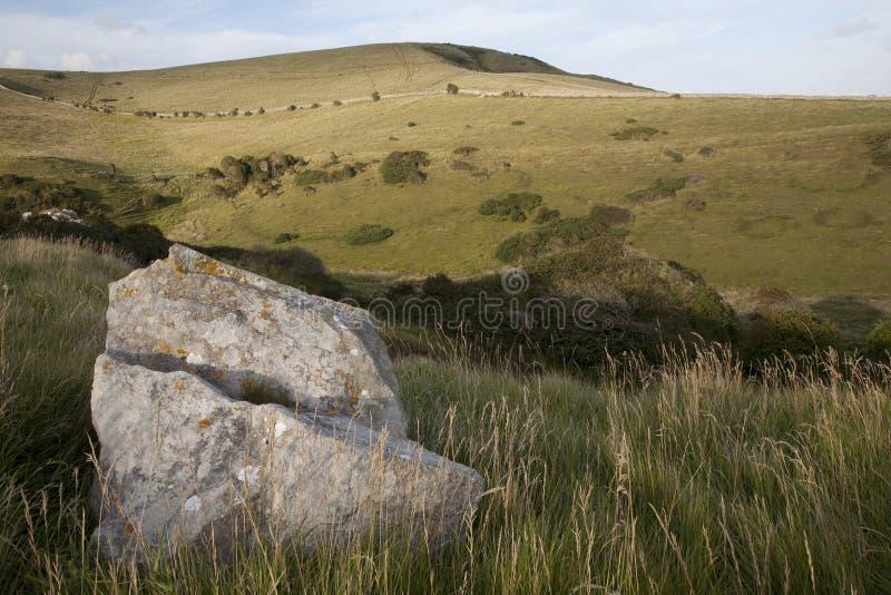 swanage för purbeck för kustdorsisle jurassic near arkivfoton