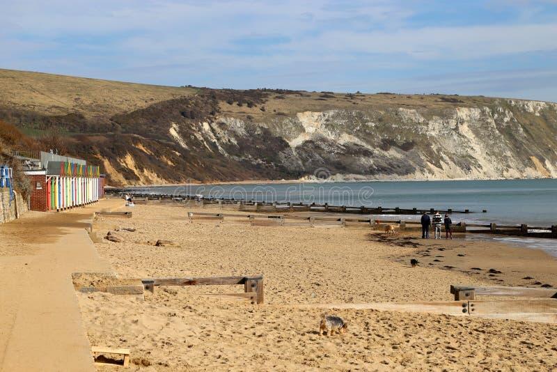 Swanage strand i södra England royaltyfri bild