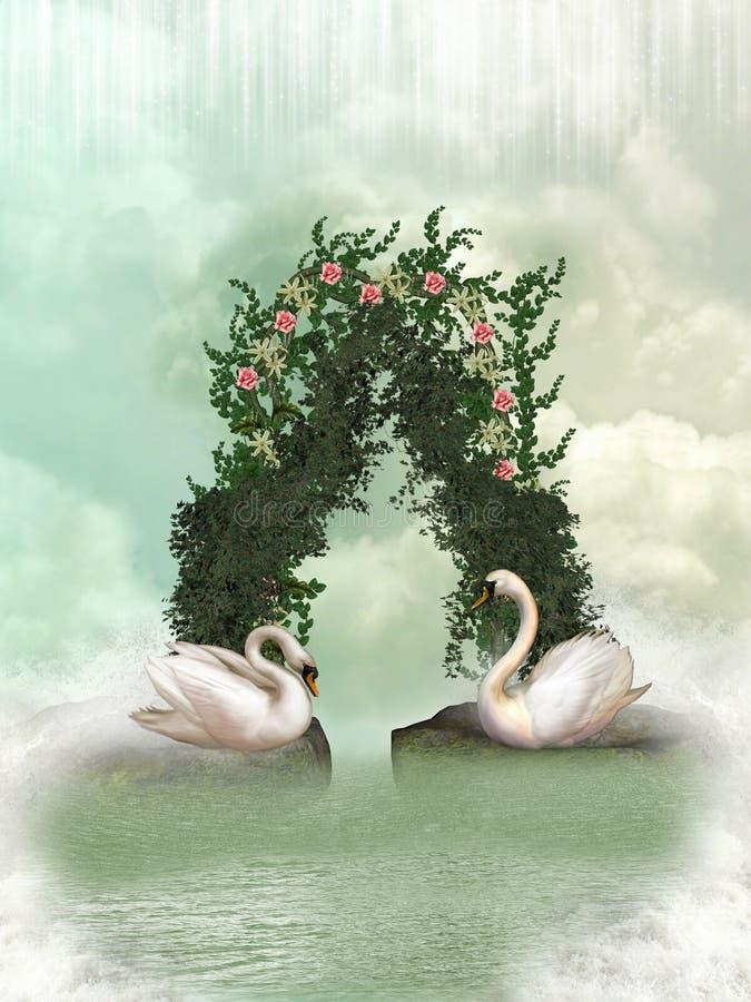 Swans stock illustration