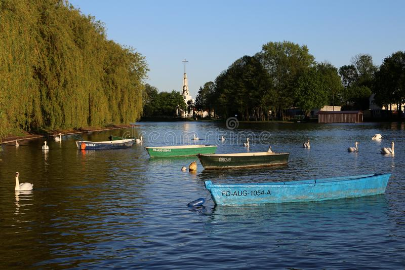 Swans and boats on the lake in the city center. stock photography