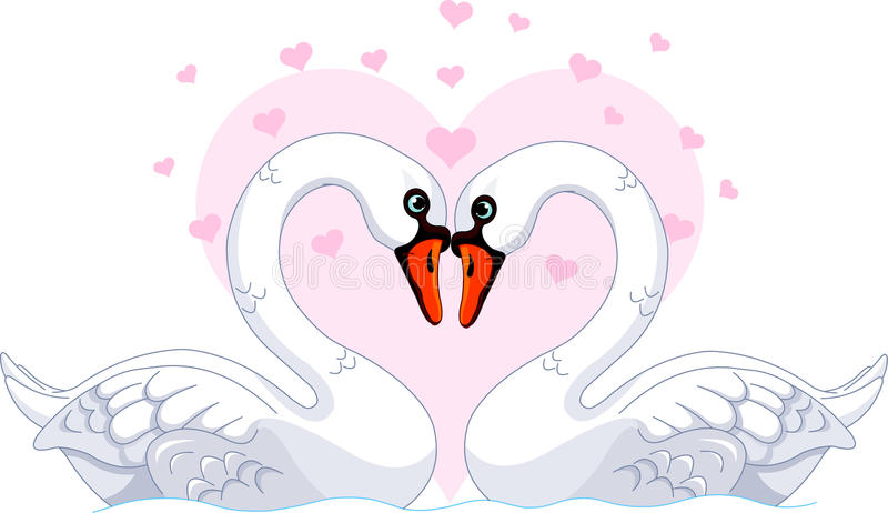 Download Swans in love stock vector. Image of elegance, love, character - 22960600