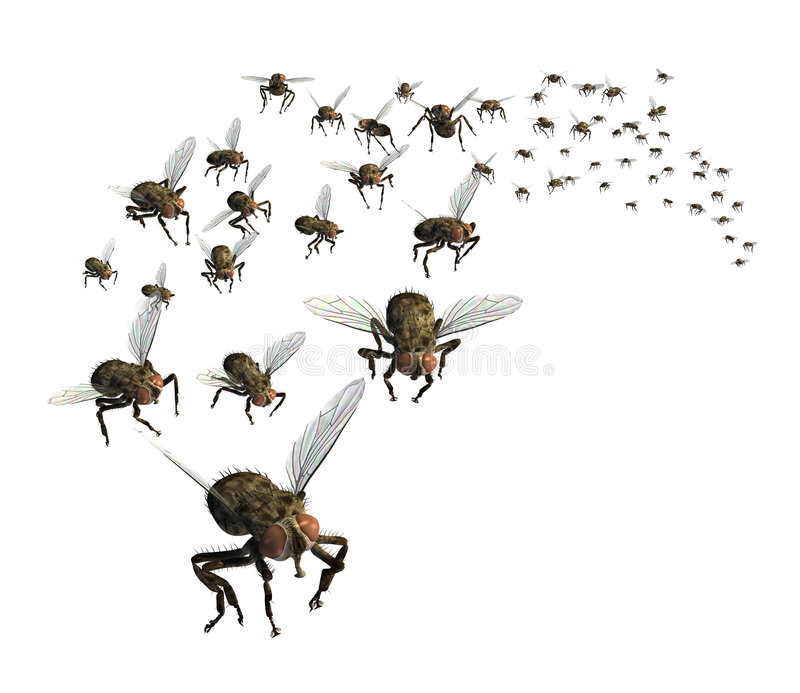 Swarm of Flies. 3D render of a swarm of flies - they're headed your way stock illustration