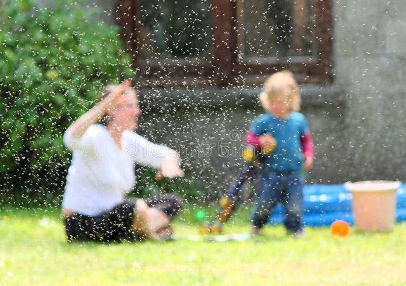 Swarm of Flies. Woman Swatting Fly Swarm in English Garden