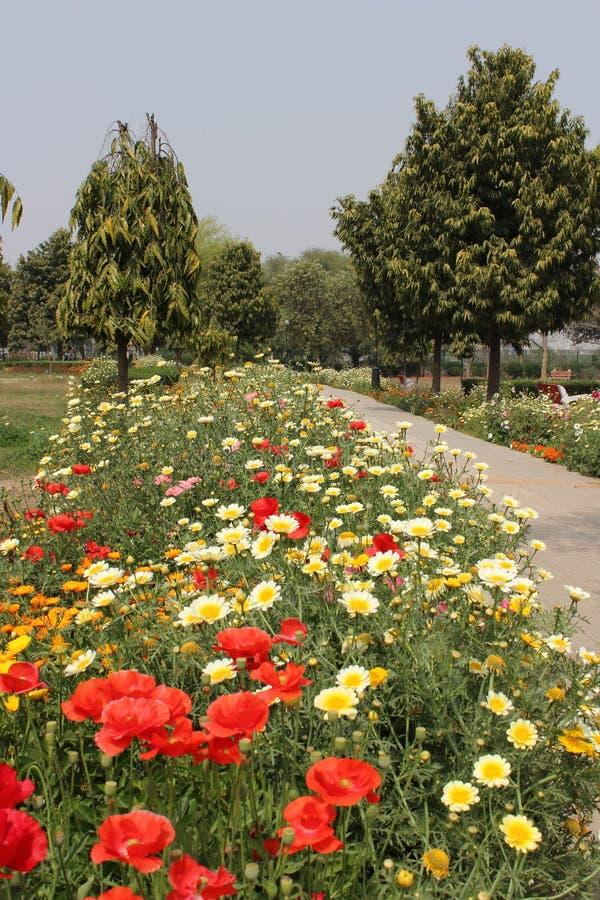 Swarn Jayanti公园, Rohini,新德里,印度 免版税图库摄影