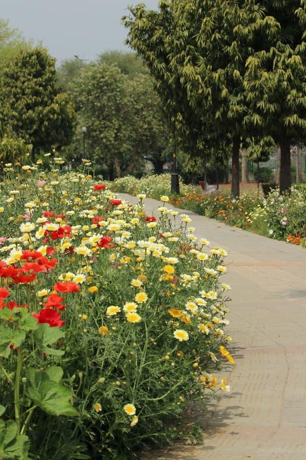 Swarn Jayanti公园, Rohini,新德里,印度 库存图片