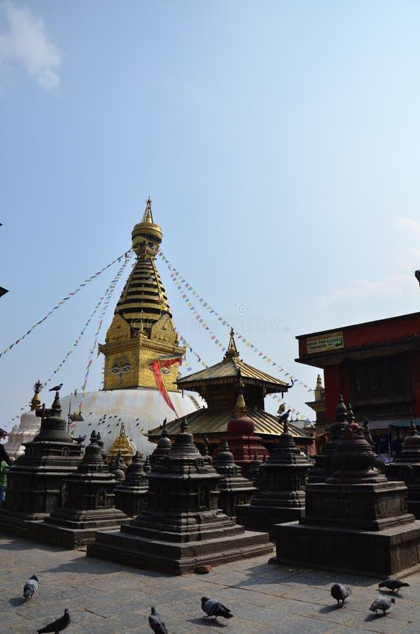 Swayambhunath świątynia lub małpy świątynia z mądrością my przyglądamy się fotografia stock