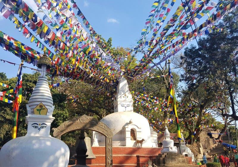 Swayambhunath Stupa, kleine weiße stupas Kathmandus, Nepal mit allem Sehen mustert stockbilder