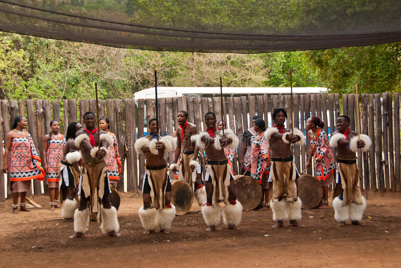 Swazi warriors royalty free stock photos