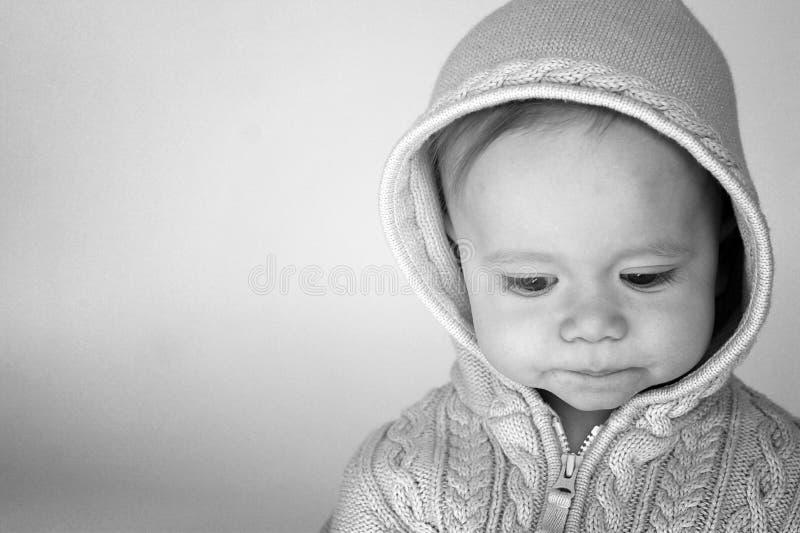 Download Sweater Baby stock image. Image of cheeks, adorable, hood - 2027205