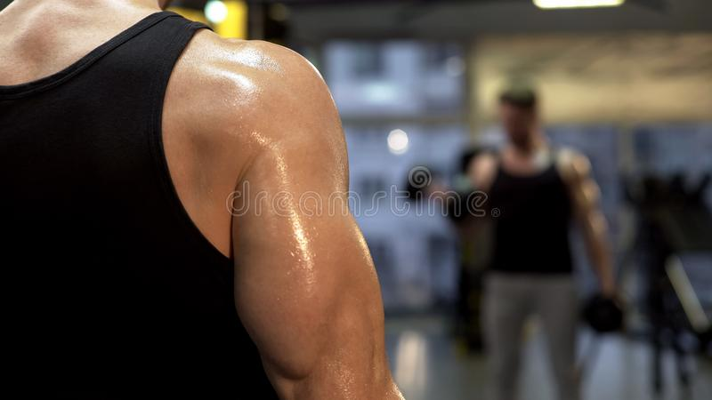 Sweaty sportsman pumping arm muscles, holding dumbbells in hands close up, goal royalty free stock photo