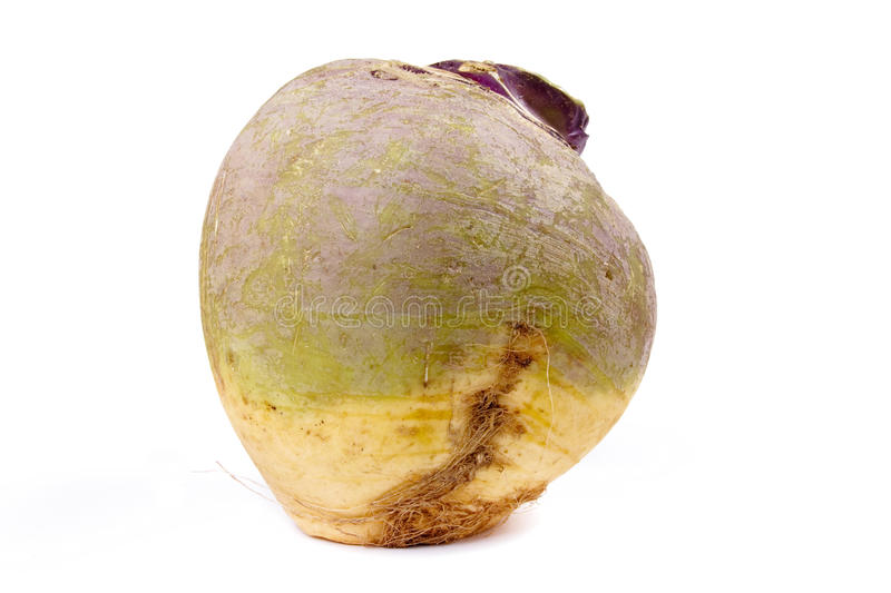 Download Swede or Turnip stock image. Image of vegetable, healthy - 11956375