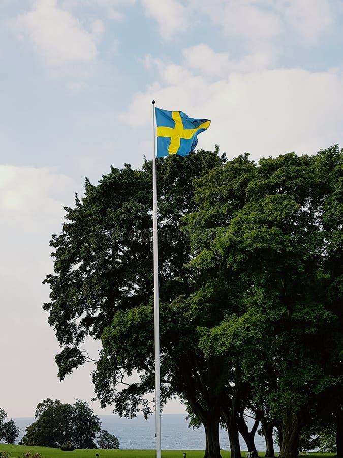 sweden foto de stock royalty free