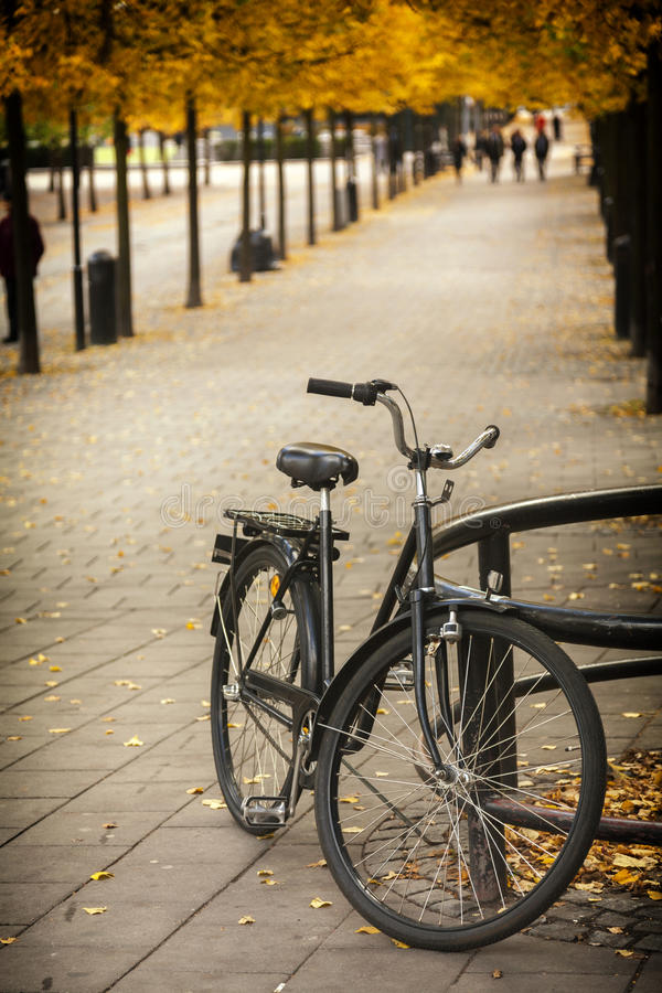 Download Sweden's Fondness For Bicycle Stock Image - Image: 38886825