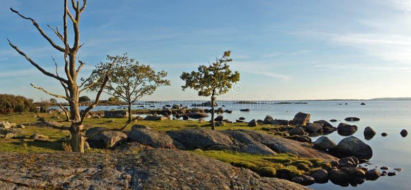 Swedish coast royalty free stock photos