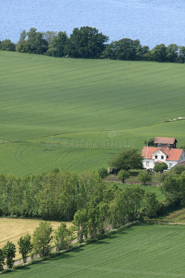 Download Swedish countryside stock image. Image of nature, farm - 13142137