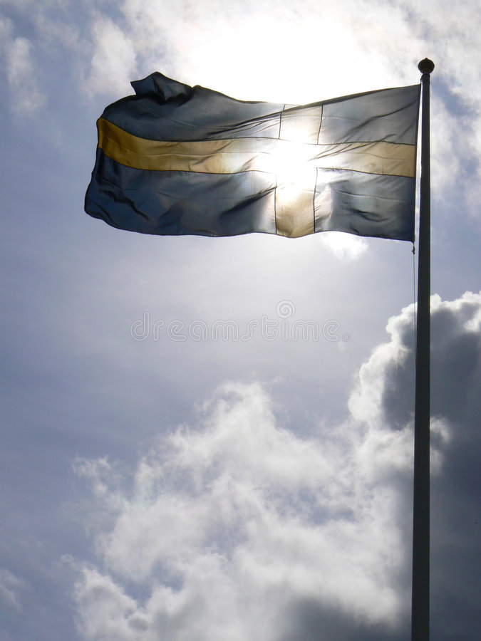 Free Swedish Flag Royalty Free Stock Photo - 1169515