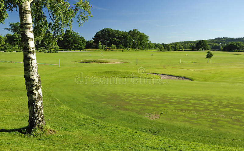 Swedish Golf Course Landscape Royalty Free Stock Photos