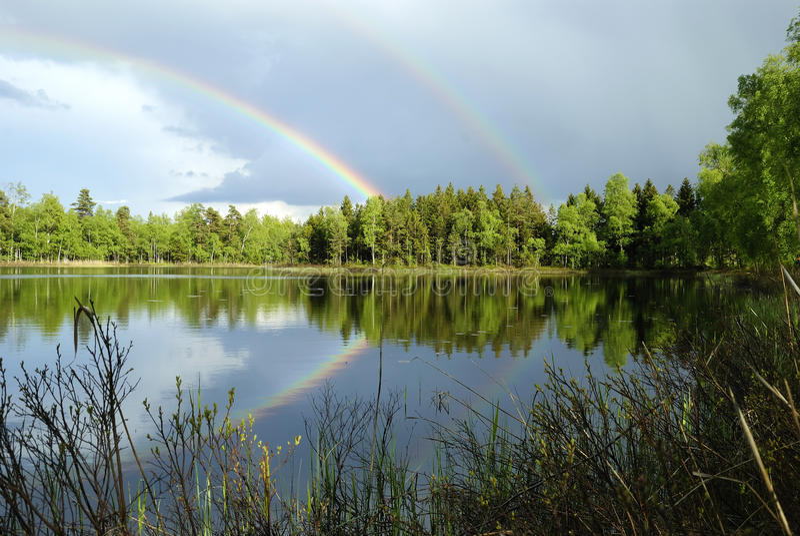 Download Swedish Lake Landscape After Rain Stock Photo - Image: 19578650
