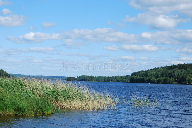 Swedish lake in summer. Swedish landscape with a lake in summer stock photos