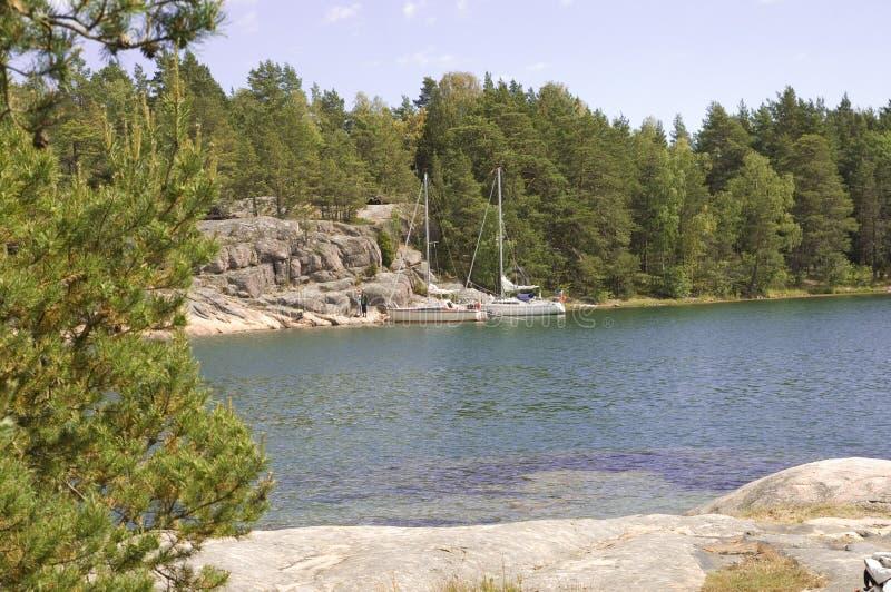Swedish nature royalty free stock photography