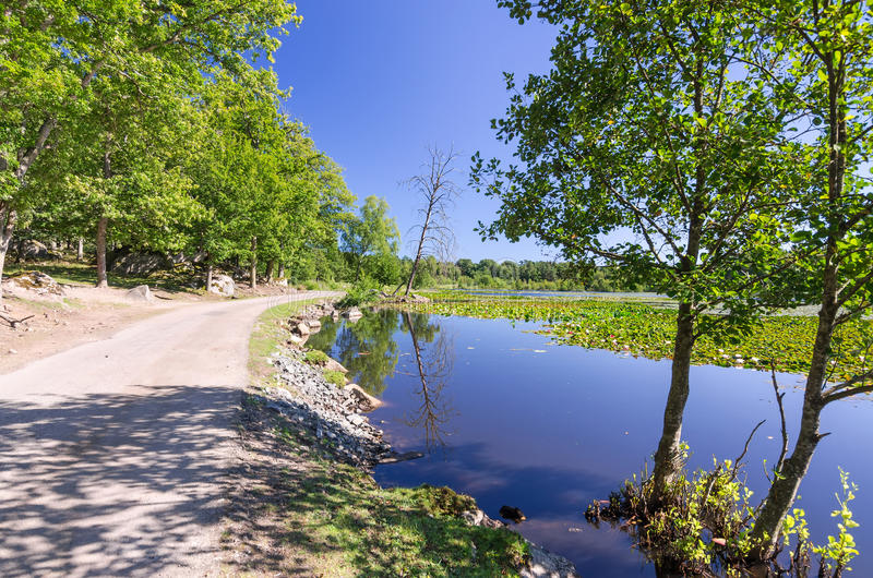 Swedish summer lake with road on the side stock photography