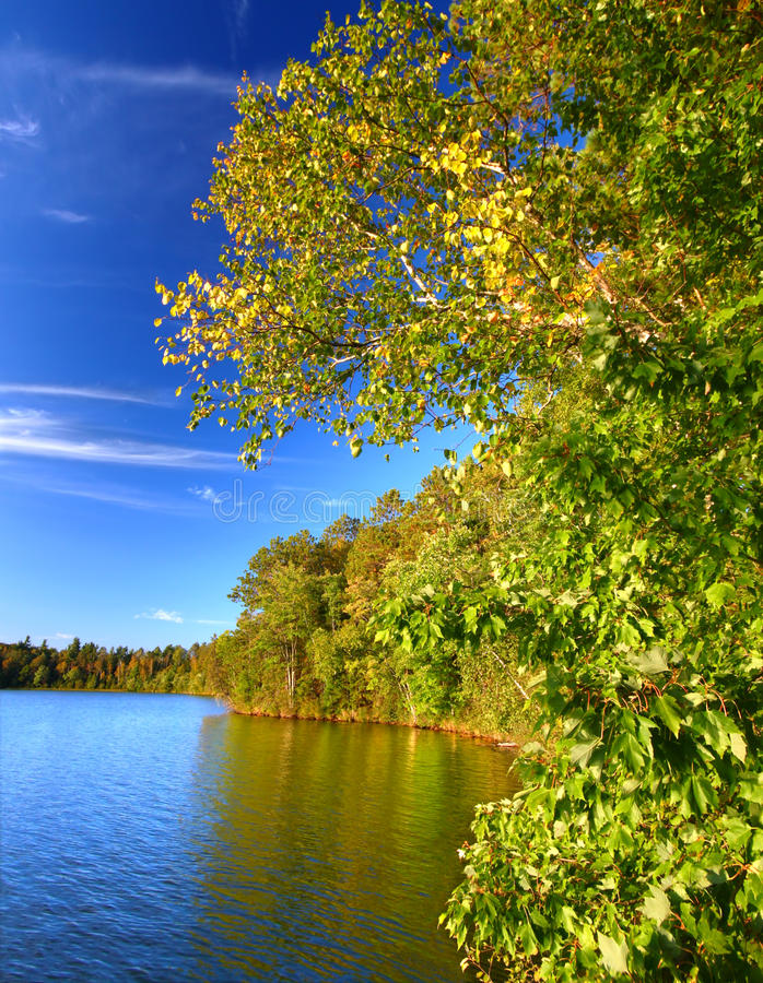 Sweeney Lake Northwoods Wisconsin. Beautiful foliage along the shoreline of Sweeney Lake in northwoods Wisconsin stock images