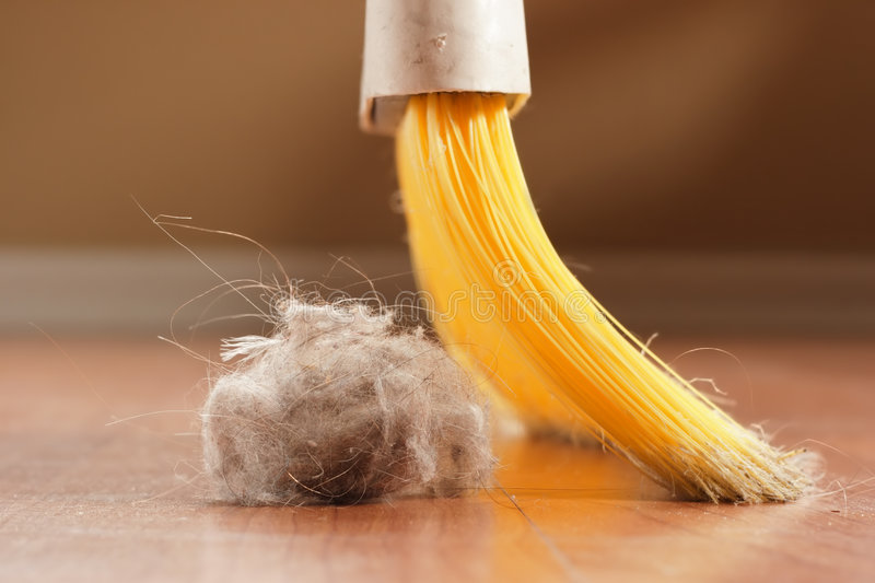 Download Sweeping stock image. Image of housework, housecleaning - 1643299