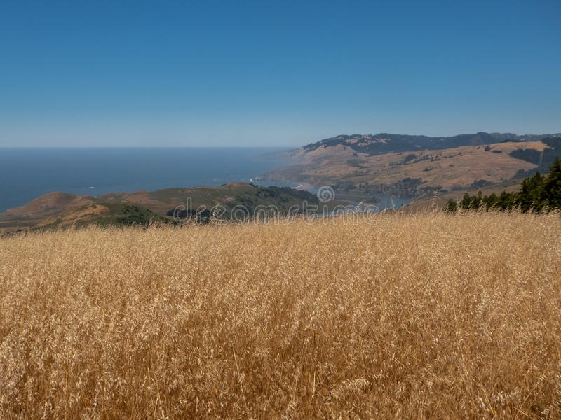 A sweeping view of the northern California coastline, long dried grass field and the ocean in the background against a bright blue stock photos