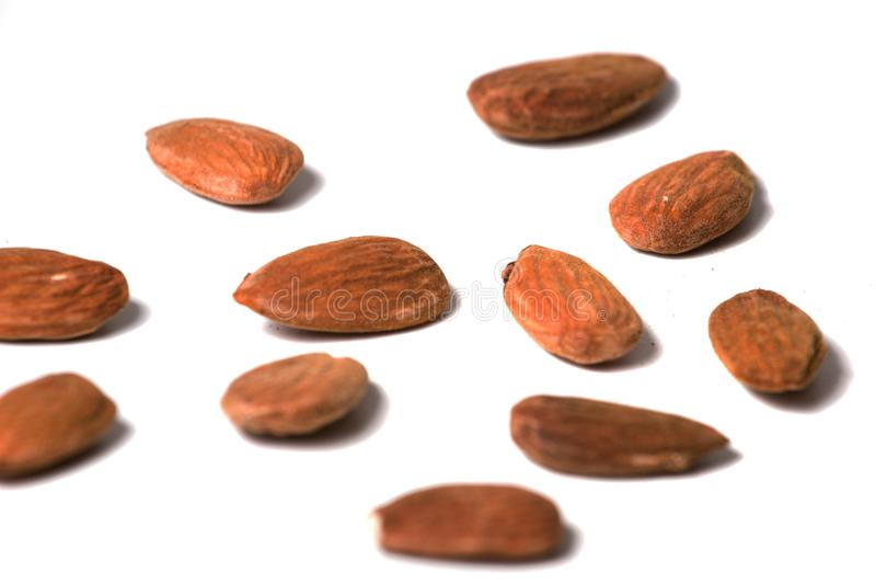 Sweet almond drupes. Isolated on a white background royalty free stock photo