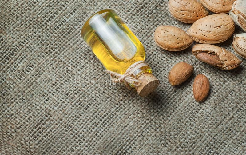 Sweet Almond oil in glass of bottle. Almonds nuts and oil concept. Great for skin health.Almond in nutshell. Organic herbal medicine for many diseases. Prunus royalty free stock photography