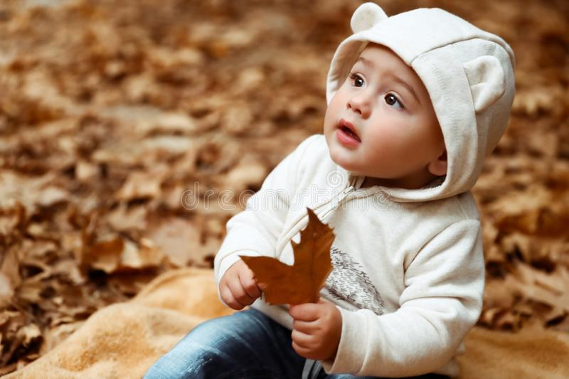 Sweet baby in autumn forest stock images