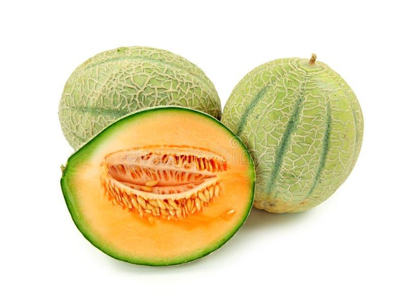 Sweet baby melon royalty free stock photo