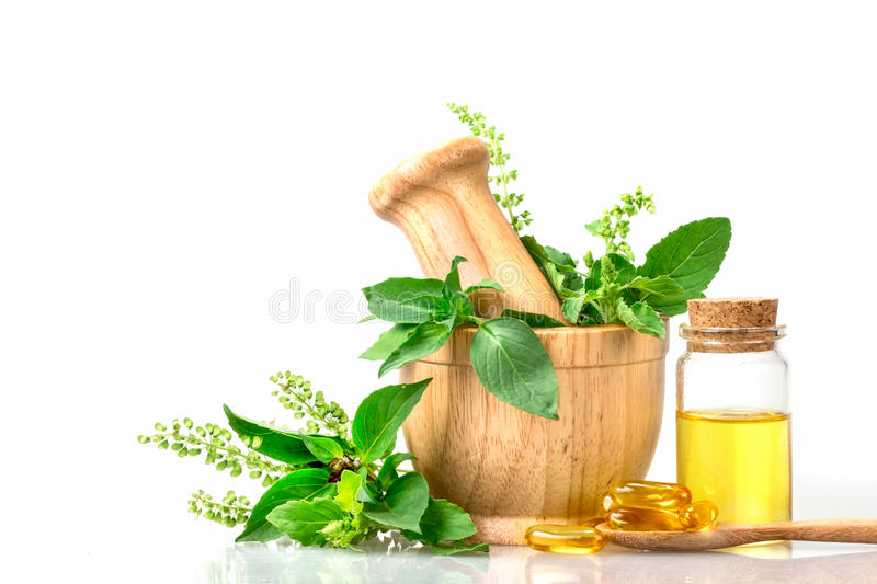 Sweet basil and hot basil in wooden mortar with essential oil an stock photo