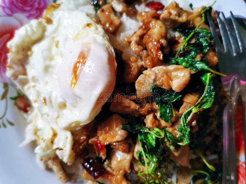 Sweet basil with pork, fried egg stock images