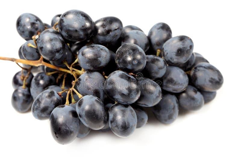 Sweet black grapes royalty free stock photos