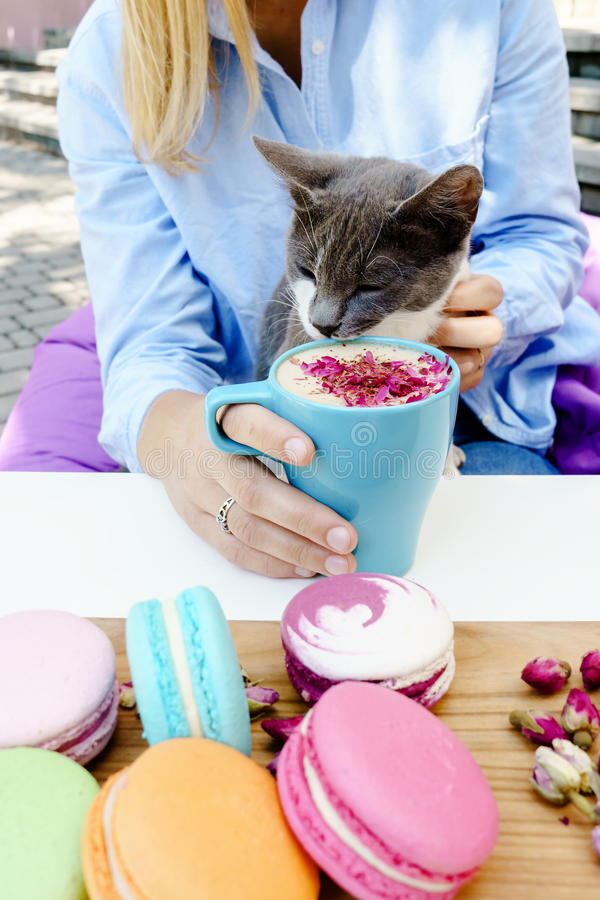 Sweet blonde girl and cute cat. Tasty cappuccino and fresh french macarons on table as dessert stock photography
