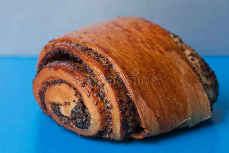 Sweet bun with poppy seeds on a blue background. Homemade roll with poppy seeds stock image