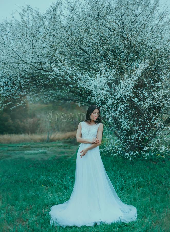 Sweet charming young woman with long black hair and emerald eyes in front of blooming white magnolias stands in amazing royalty free stock image
