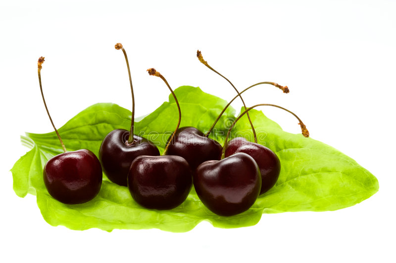 Download Sweet cherries stock photo. Image of green, food, organic - 8285536