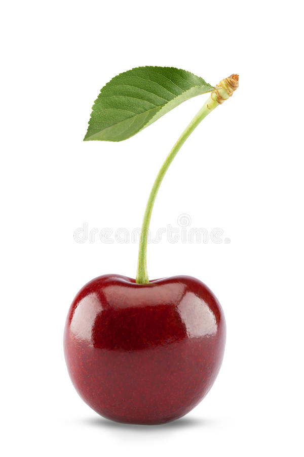 Free Sweet Cherry Isolated On White Royalty Free Stock Photo - 46167915