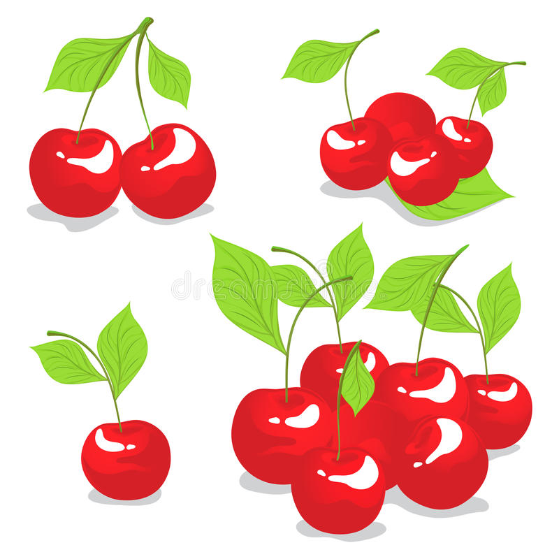 Download Sweet Cherry Isolated On White Stock Vector - Image: 24474068