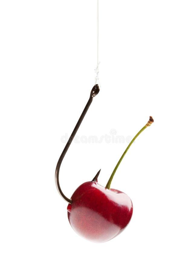 Free Sweet Cherry On The Hook Stock Photos - 15795513