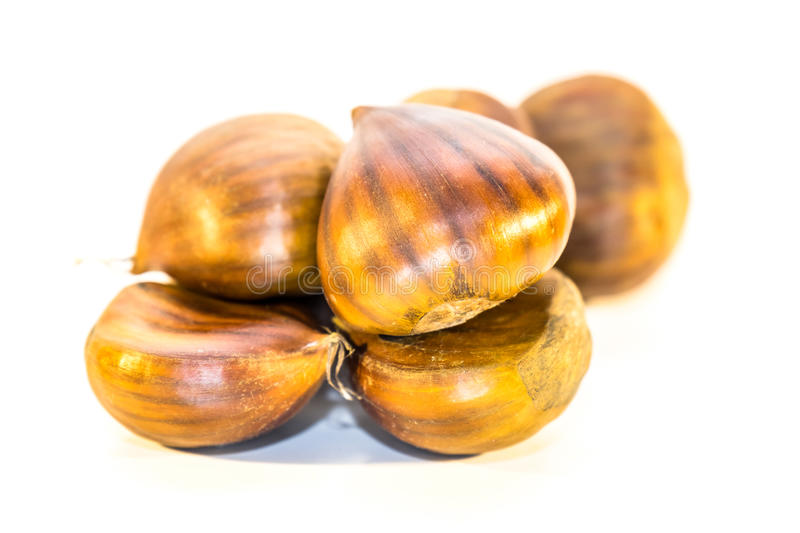 Download Sweet Chestnuts Isolated Stock Photo - Image: 83704859