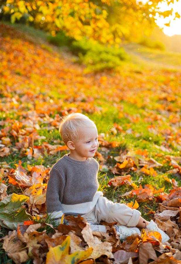 Sweet childhood memories. Child autumn leaves background. Warm moments of autumn. Toddler boy blue eyes enjoy autumn. Small baby toddler on sunny autumn day stock photography