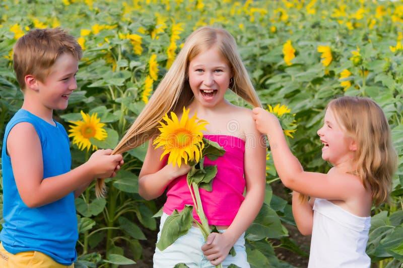 Download Sweet Children In Sunflower Field Stock Photo - Image: 20512110