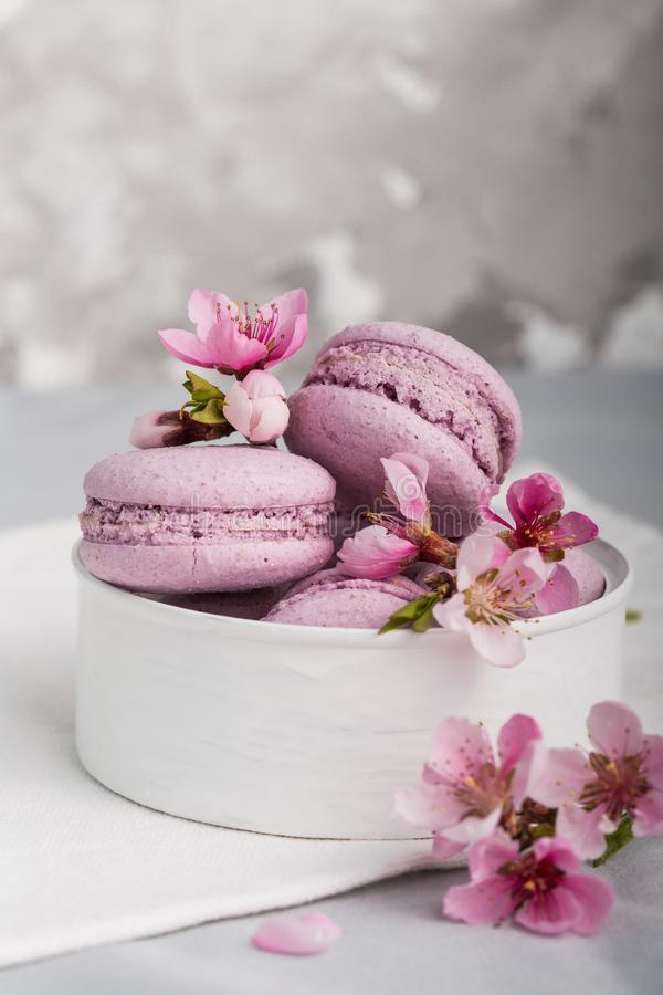 Sweet chocolate french macaroons or macaron on wooden background, Dessert. macaroons with peanut flour. NSweet and colourful french macaroons or macaron on stock image